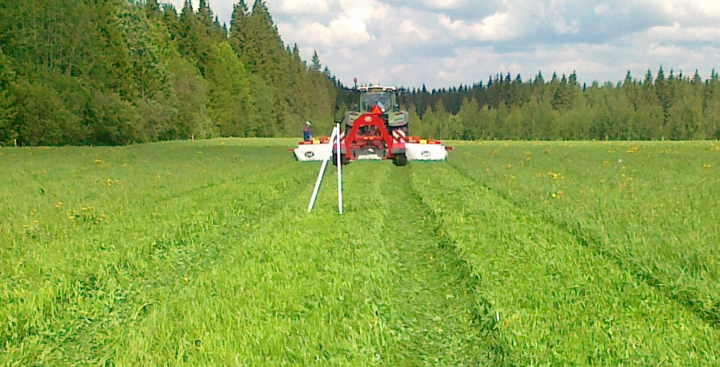 Topping of the grass in red clover-grass sward in Eastern Finland did not succeed in giving red clover a relative advantage in a mixed ley. Photo P. Kurki.